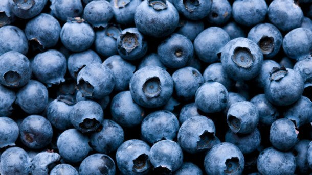 Blueberry-powders-shows-endothelial-benefits-Human-data_strict_xxl