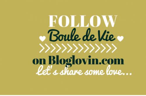 follow, bouledevie, blolglovin, blogger, community, bloggerslife