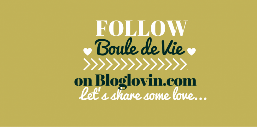 follow, bouledevie, blolglovin, blogger, community, bloggerslife