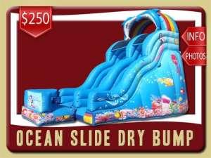 Ocean Bump Dry Slide Rental, Inflatable, Fish, Colal, Sea, Mermaid, Dolphin, Blue, Ranbow
