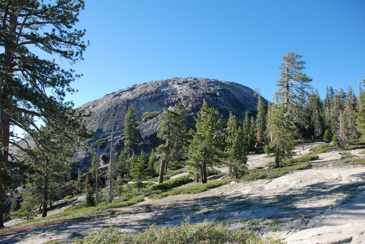 Sentinel_Dome_from_Trail_0615