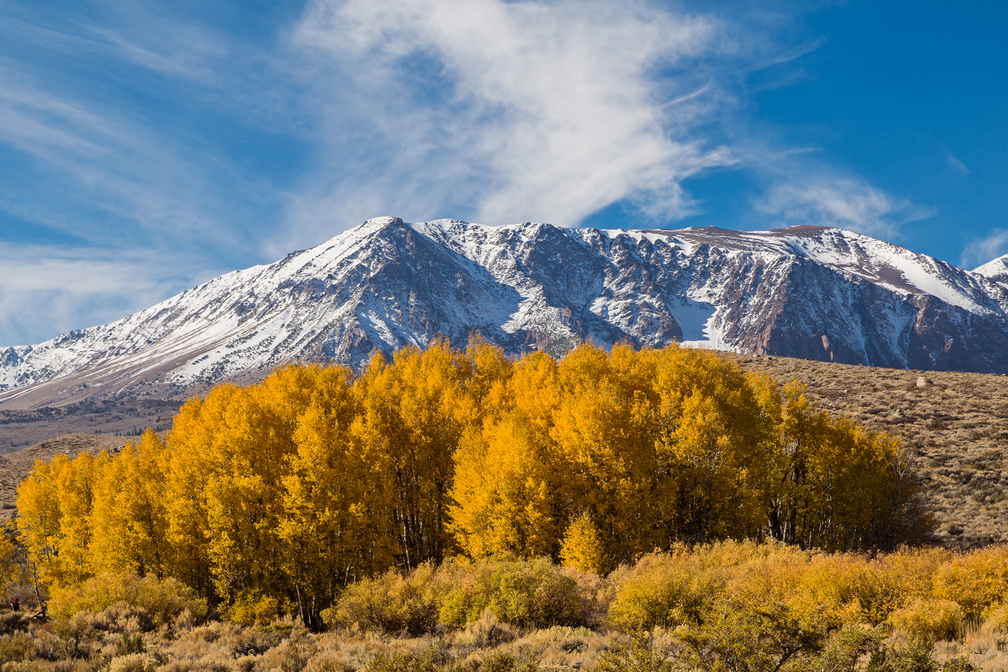 The Mountains are Calling| Chasing the Last Fall Colors in the Eastern Sierras