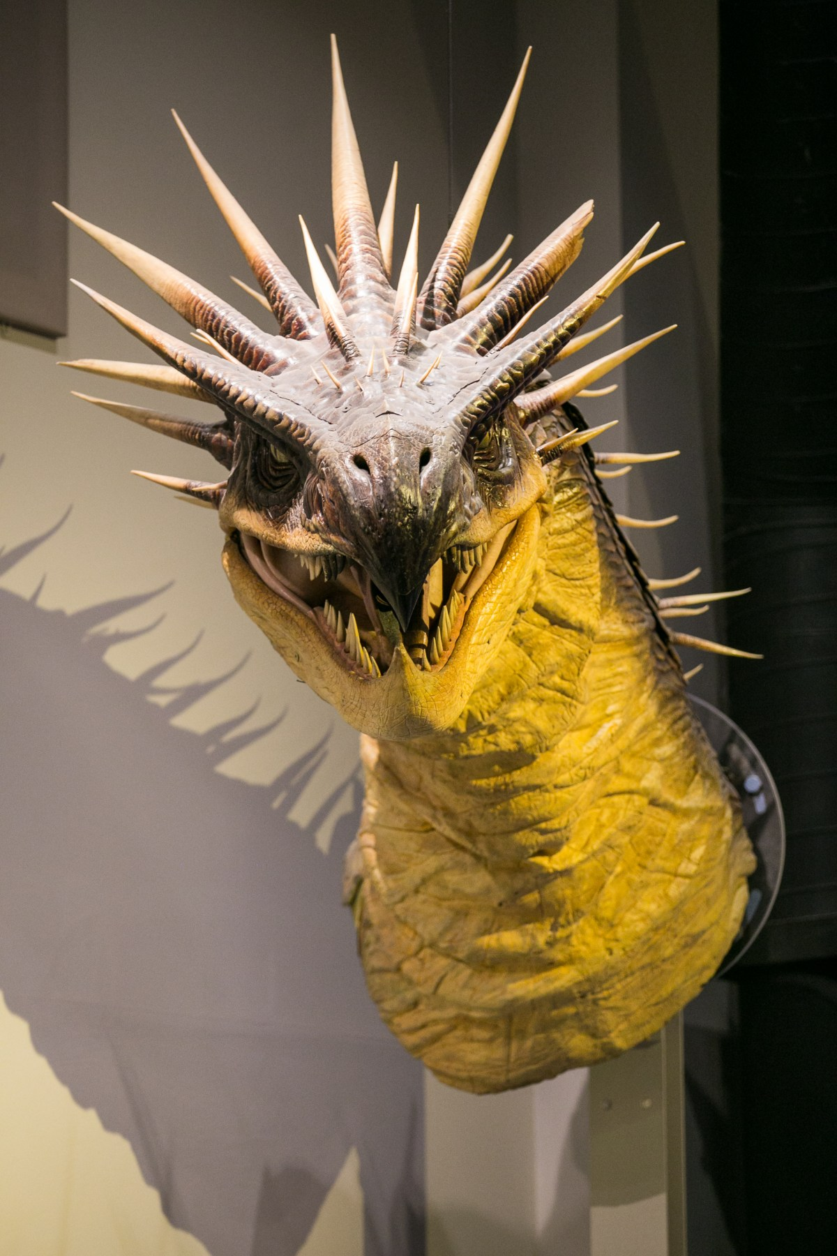 harry-potter-studio-tour-hungarian-horntail