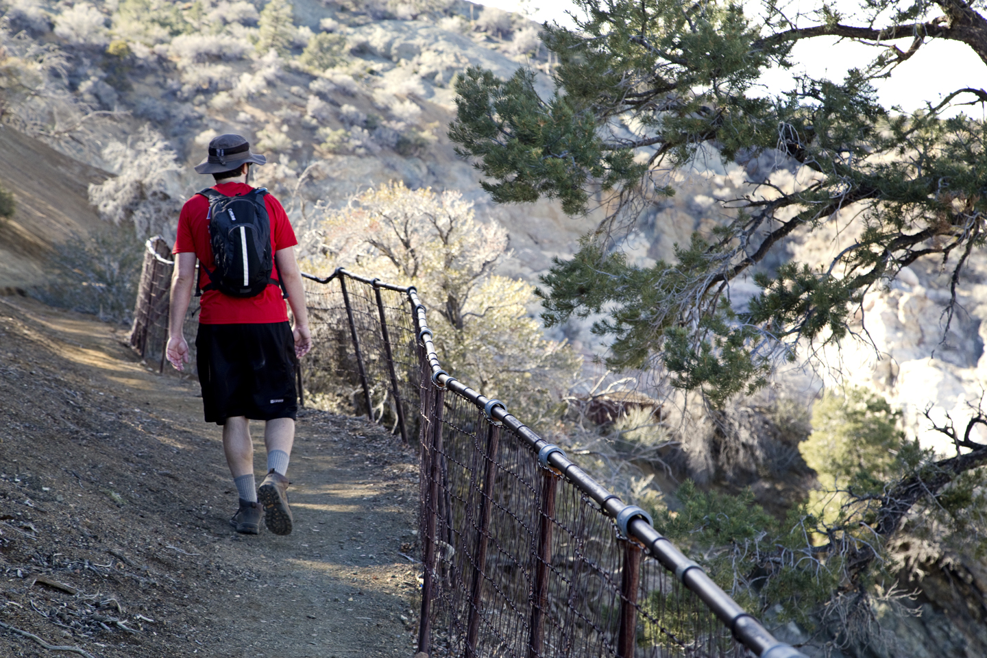Five Essential Tips for a Successful Day Hike