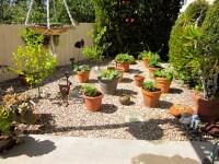 Building ideas: Backyard landscaping ideas no grass