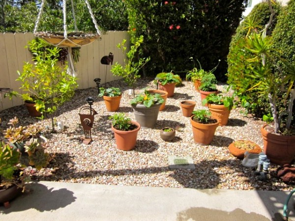 building ideas backyard landscaping