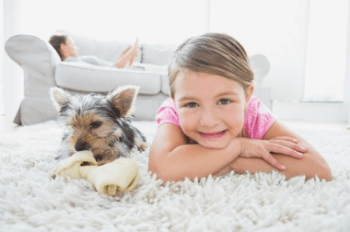 Bountiful Utah Carpet Cleaning Company