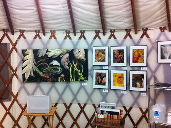 Art in yurt