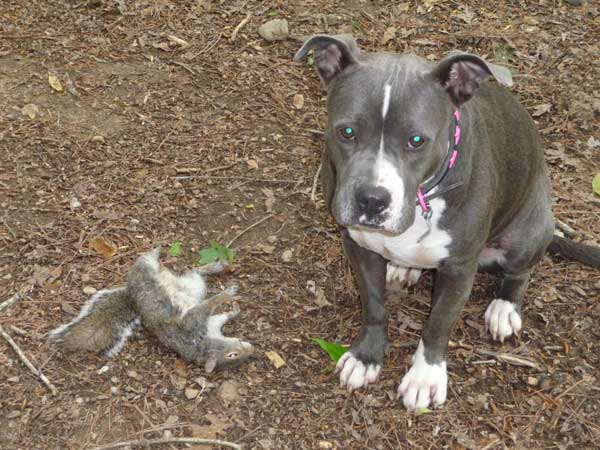 Irene with Dead Squirrel