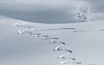 【最低気温ランキング日本版】1位は-41度の北海道旭川!2000年代が順位に入らない理由は温暖化のせい?