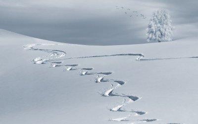 過去歴代の最低気温は何度でどこ?2000年代ランキングなしは温暖化?