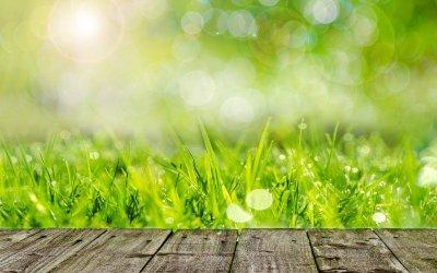 小春日和の意味・時期はいつ?世界のポカポカ陽気の名前も紹介