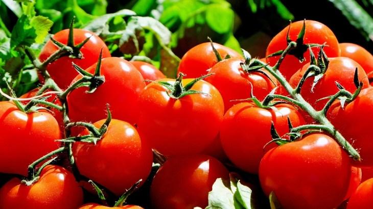 【地震の前兆?】赤い夜空が三重県津市で目撃!原因はトマトが関係している?