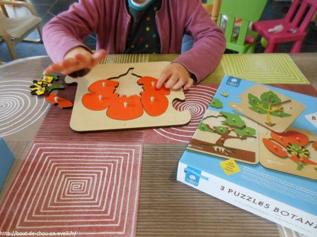 Activité Montessori puzzles botaniques