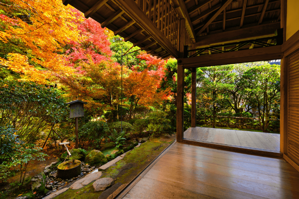 Eikando Temple in Kyoto, Japan, is a particularly famous place to see the fall colors