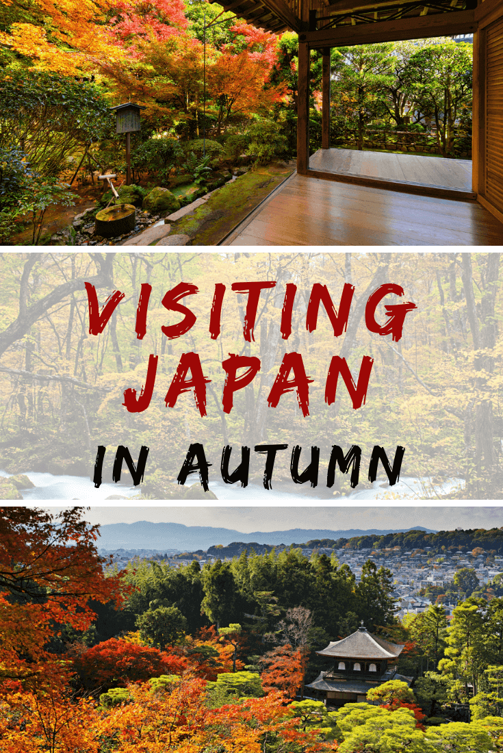 Fall in Japan, with its brilliant foliage, is stunningly beautiful. Here's a guide to help you get the most out of your autumn trip to Japan!