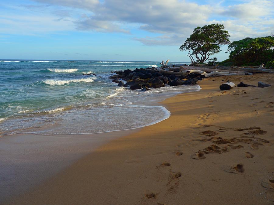 Lydgate State Park Beach, Kauai, Hawaii