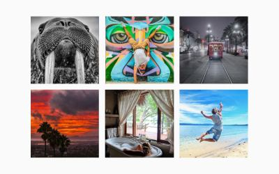 My Top 10 Instagrammers to Follow in 2017