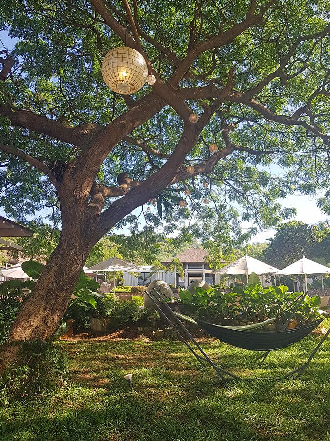 Bacau Bay Resort Coron Philippines - gardens