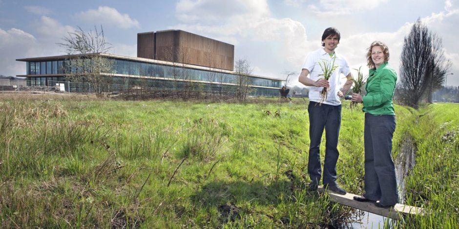 Milieutechnologie 'Plantbatterij'