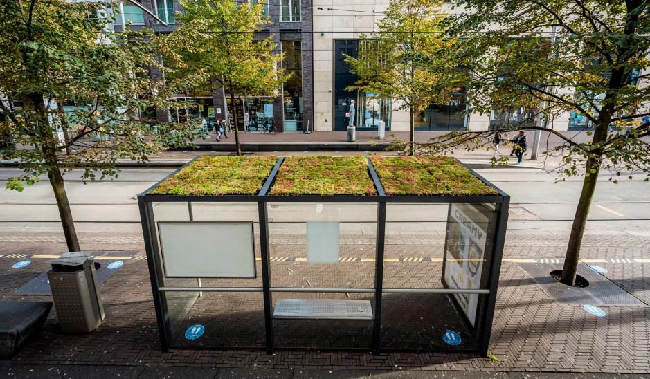 Duurzame en groene bushokjes in centrum Den Haag