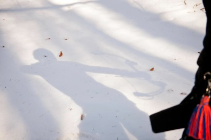 2015 Winter 9 - detail schaller