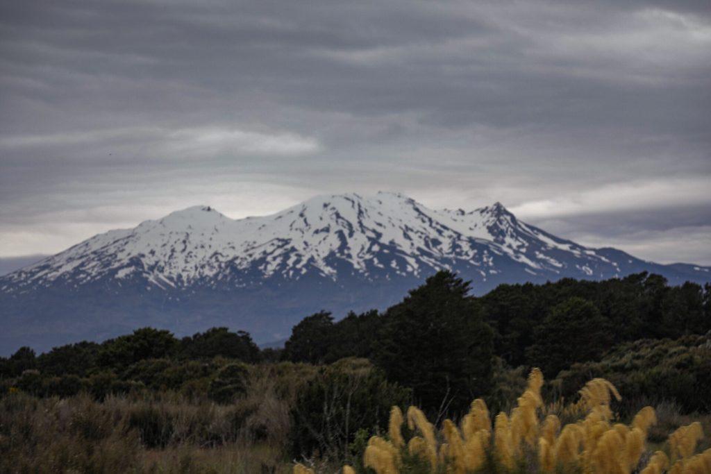 Northlander New Zealand
