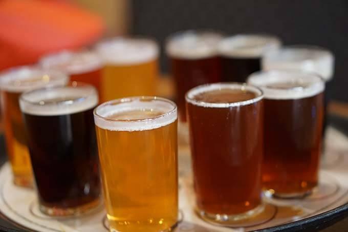 A flight of beers for beer tasting