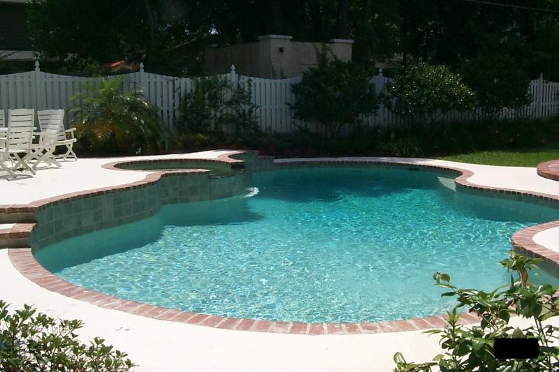 Freeform pool design Orlando pool design Windermere