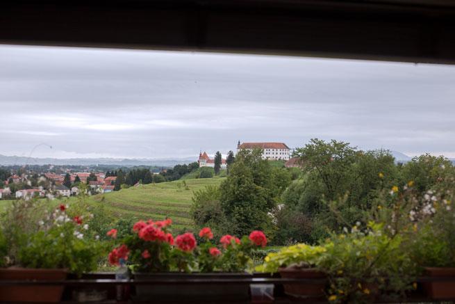panorama metka gutschi ptuj slovenia