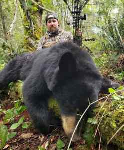Best rifle for bear hunting