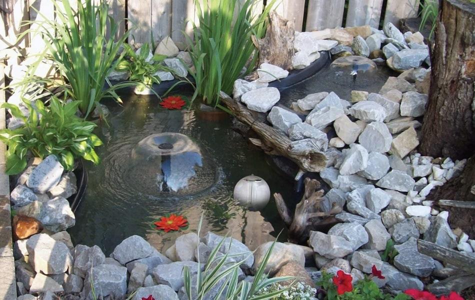 270 gallon backyard pond pinkarmy.net