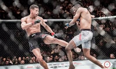 Officiel, le MMA sera légalisé en France à partir de janvier 2020 !