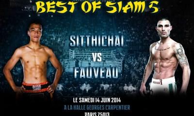 Johann Fauveau vs Sittichai - Fight Video BOS 5 - 2014