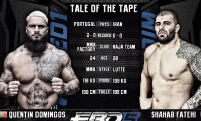 Quentin DOMINGOS vs Shahab FATEHI - MMA Fight Video - EBD 5