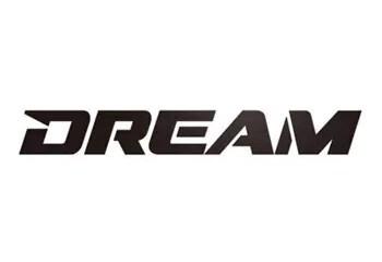 Nick Diaz vs Katsuya Inoue - Dream Video.