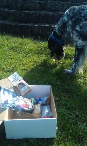 DogzBox