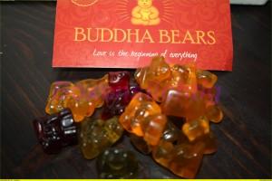 Budha Bären