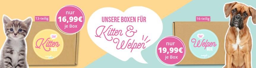 zooroyal-welpen-und-kittenbox-lp-1140x305