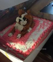 coolest-boxer-cake-17227-e1362746320561-689x800