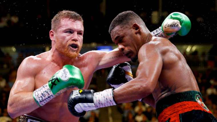 best everlast boxing gloves