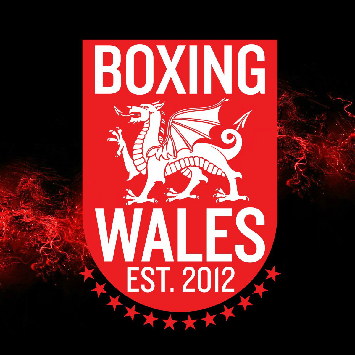 Boxing Wales 2017