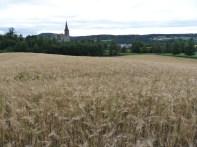 Beautiful farm near Trondheim
