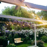 How to Illuminate Your Garden at Night with Elegear Garden Lights