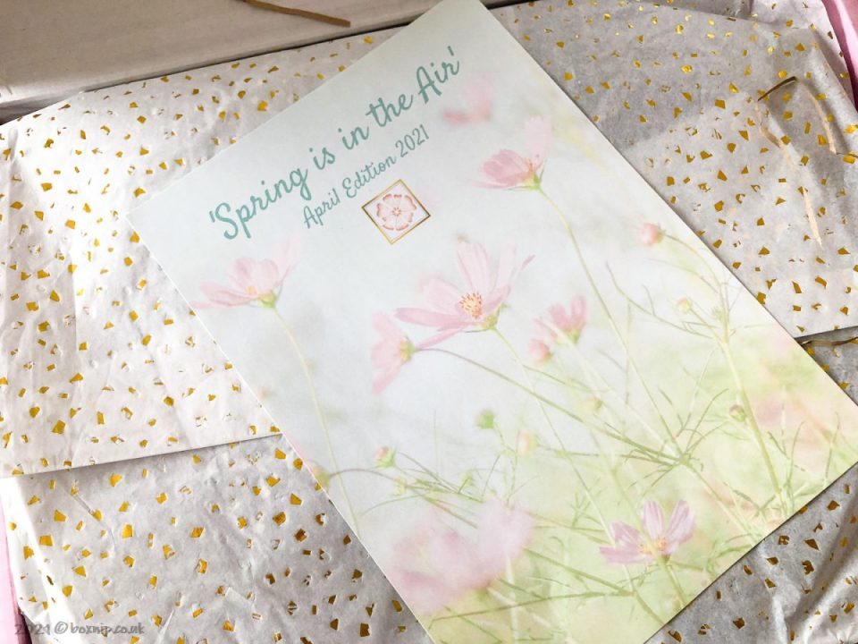 The Pomelo Box Spring Edition