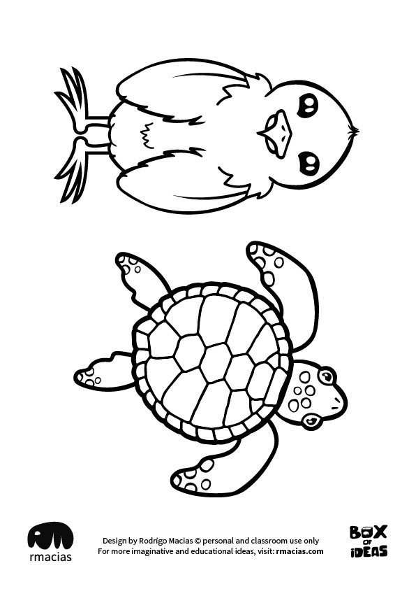 Bird And Turtle Animal Adults And Kids Drawings For Inclusive Diy