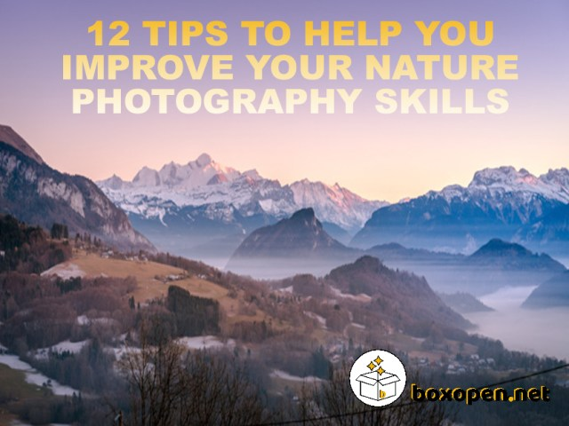 12 Tips to Help You Improve Your Nature Photography Skills