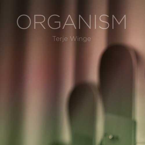 Terje Winge - Organism (MQA FLAC)