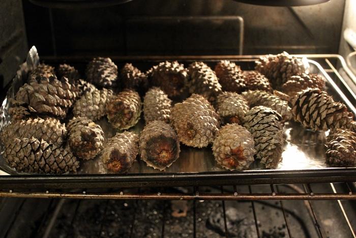 gold-pinecones4