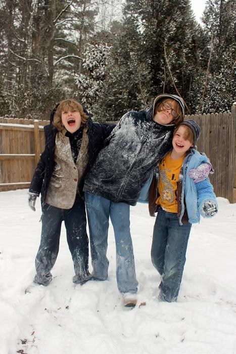 snow201412small
